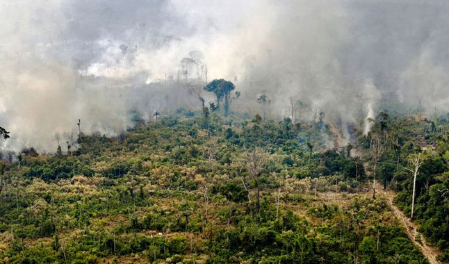 View of a burned area in the Amazon, near Porto Velho. Photograph taken on August 25, 2019. Credits: AFP